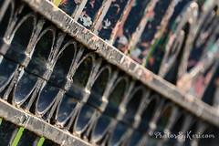 Macro Mondays - Summer Olympic Sports: Fencing (Play On Words) (KAM918) Tags: fencing macromondays happymacromonday summerolympicsports summer olympic sports hmm massachusetts ma lowell nikon d610
