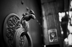 Gatekeeper (elgunto) Tags: dragon street girona door detail blackwhite bw sonya7 zeiss flektogon 35mm manuallense