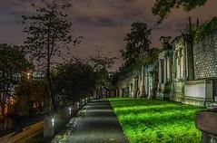 Walking dead (MC Snapper78) Tags: scotland nikond3300 necropolis graveyard night glasgow marilynconnor