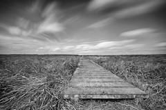 laying low (kceuppens) Tags: bridge brug landscape landschap bw blackandwhite black white zwart wit natuur nature long exposure le lee filter big stopper nikon d810 nikkor1635f4vr nikkor 1635 ultrawide ultra holland dutch netherlands verdronkenlandvansaefthinge verdronken land saefthinge polder