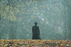 Evening walk (U.Bek) Tags: park autumn woman mist leaves fog copenhagen walking denmark trolley foggy sndermarken canon70d