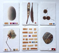 Earth*Life*6 (anczelowitz) Tags: new wood white art rock collage japan ink paper tile design pod paint stitch natural sweet handmade earth assemblage mosaic egg group silk seed cotton craig papel eco stitched gesso woodsy kozo washi deckle inkjet veneer awagami anczelowitz