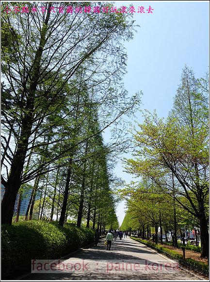 高陽國際花卉博覽 (2).JPG