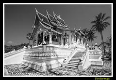 Luang Prabang (doctorangel) Tags: de temple robe alma monk monks laos wat templo almas saffron luang ofrendas prabang monje ceremonia monjes azafran habito sensoukaram watxientong horphrabang