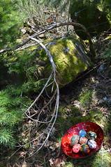 DSC_0536-1 (Chaumurky) Tags: forest easter folkart eastereggs easteregg paintedeggs pisianki