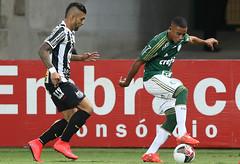 Palmeiras x Santos (26/04) (sepalmeiras) Tags: palmeiras santos sep campeonatopaulista sriea1 allianzparque gjesus palmeirasxsantos26042015