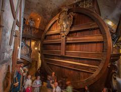 Heidelberg Castle Wine Vat (mahesh.kondwilkar) Tags: germany heidelberg avalon heidelbergcastle heidelbergtun greatheidelbergtun avalonwza heidelbergwinevat avalonwzaday3