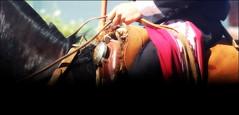 Adelante (Eduardo Amorim) Tags: horse southamerica argentina silver caballo cheval plata pferde poncho cavallo cavalo gauchos pferd ayacucho argent pampa riendas hest pala hevonen apero gaucho prata badana  amricadosul carona boleadoras hst platera gacho  amriquedusud provinciadebuenosaires  recado gachos  basto sudamrica suramrica amricadelsur  sdamerika cabresto  pilchas pretal  buenosairesprovince facn pilchasgauchas recao pampaargentina cabestro americadelsud plateracriolla rebenque sobrepuesto  americameridionale boleadeiras rdeas eduardoamorim caronero chifle pampaargentino platera criolla