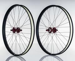 Velocity_Dually_Profile_Set (Cycle Monkey USA) Tags: trail riding mtb trailriding customwheels profileracing velocityusa