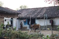 Rural vilage Kawardha - India (wietsej) Tags: india zeiss rural farm sony 18 55 vilage kawardha sel55f18z a7rii