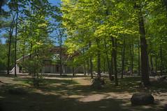 BBQ at Vincent Macey Park, Ottawa 2015 (lezumbalaberenjena) Tags: park parque ontario canada river back ottawa vincent bbq barbecue parc rideau manzanita hogs 2016 masey