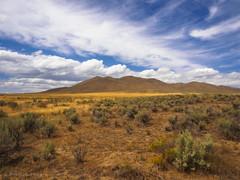 Eastern Oregon Sage and Sky (RobertCross1 (off and on)) Tags: flowers mountain grass clouds oregon landscape us unitedstates desert or bluesky olympus sage hills highdesert pacificnorthwest ironside omd malheur em5 1250mmf3563mzuiko