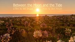 Between the Moon and the Tide (Bill Shupp) Tags: california alaska landscape hawaii timelapse colorado canon6d sonyalphaa7r