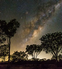 Milky Way Rising (andrew.walker28) Tags: trees night dark way stars landscape long exposure centre australia center queensland saturn dust milky core lanes galactic starlight antares