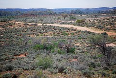 A Sunday drive to Purnamoota Gate (Chris BH) Tags: desert brokenhill ninemile