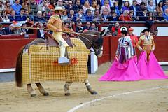 Picador (Fotomondeo) Tags: bull bullfighter toros bullfight toro picador matador torero sanisidro plazadetoros corridadetoros lasventas