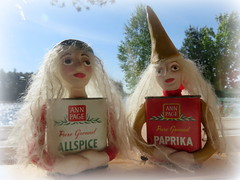 A couple of spice girls at the lake (yooperann) Tags: lake sunshine vintage dolls bass michigan spice craft upper peninsula paprika tins allspice