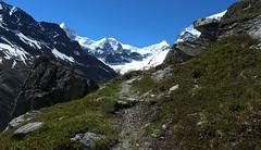 Plan Pato (bulbocode909) Tags: nature suisse vert bleu neige paysages rochers valais montagnes zinal sentiers planpato
