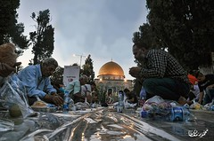 Breakfast in arenas of Al Aqsa masjid in #Ramadan (TeamPalestina) Tags: heritage beautiful architecture sunrise hope amazing photographer sweet palestine jerusalem domeoftherock blockade ramadan freepalestine alaqsa palestinian occupation goldendome  oldcityjerusalem landscapecaptures