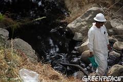 Oil Hazmat Work (Greenpeace USA 2016) Tags: oil spill pipeline fossilfuel ventura california pollution cleanup crude ca usa