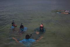 IMG_6775 (Florida Sea Grant) Tags: coral kids youth keys snorkel gulf florida dive sponge keyswest mahoganyyouth