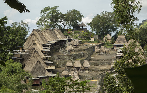 Bena Traditional village-Ngada-Flores island
