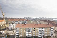 Elineberg - mars 2015