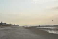 Sunset in Sint-Idesbald. (Azariel01) Tags: sea mer beach vent sand belgium belgique belgie wind seagull sable windy zee plage mouette riders cavaliers 2015 sintidesbald venteux