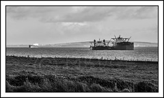 Ship to Ship (MBDGE) Tags: boat orkney ship large alsace oil tanker crude sts scapaflow shiptoship genmarvision