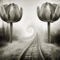 A long long time ago (lorenka campos) Tags: art nowhere traintracks surreal fantasy melancholy iphoneart mobileartistry