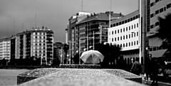 Piedra. (mmmmarta93) Tags: winter blancoynegro blanco y wind negro viento galicia invierno nublado fro paraguas acorua orzn monocromtic