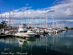 Hastings is the Western Port Marina (Jan's candidimage photography) Tags: port marina boats fishing hastings weatern