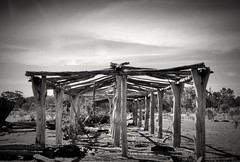 bones of a shed (HOLLY HOP) Tags: bw abandoned monochrome architecture rural wow outdoors wooden decay farm australia posts ruraldecay goldsborough woodenshed farmshed centralvictoria