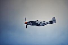 meeting Fert Alais (Pixelicus) Tags: colors plane carson nikon aircraft aviation air planes motor kit aviator avion avions p51 meetingarien cerny fertalais d700