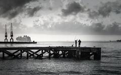 """Pesca y despedida   """"So long fishing"""" (Eduardo Regueiro) Tags: crucero lisboa portugal puente puente25deabril reflejos tranvia trasatlantico"""