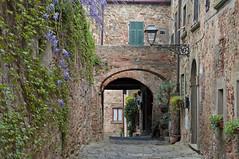 La via fiorita di Pereta - The flowery street of Pereta (ricsen) Tags: italy italia tuscany toscana grosseto maremma pereta maglianointoscana