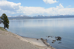 "Lake Yellowstone • <a style=""font-size:0.8em;"" href=""http://www.flickr.com/photos/75865141@N03/27043488143/"" target=""_blank"">View on Flickr</a>"