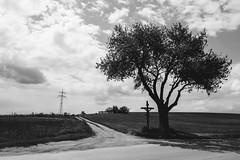 silencio (Feroswelt) Tags: bw nature power ngc great natur lonely moment powerful silencio stille