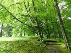 Ortenau Wein-Wanderweg  - Kurpark Baden-Baden (thobern1) Tags: ortenau weinwanderweg badenbaden kurpark badenwrttemberg germany