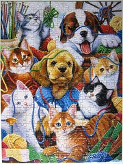 Yarn Buddies (Jenny Newland) (Leonisha) Tags: dog cat chat kittens puzzle hund katze jigsawpuzzle ktzchen
