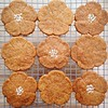 Euro 2016: Belgium vs Wales: 1-3 (Bless Ltd) Tags: biscuits belgian buttery rocksugar speculoos belgianbiscuits spicedbiscuits