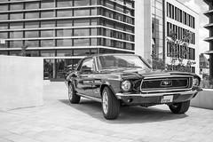 Lenkwerk Bielefeld - U.S. Cars to assemble (Matt160178) Tags: canon eos 7d bielefeld eos7d lenkwerk 1855stm efs1855mmf3556stm