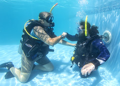 2311 Andrew Searle (KnyazevDA) Tags: sea underwater wheelchair scuba diving disabled diver padi undersea handicapped amputee disability