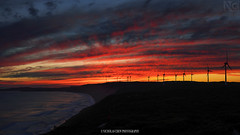 Albany Wind Farm (Nicholas Chewy) Tags: winter sunset panorama 50mm sand wind farm sony dream australia western albany patch peninsula mistaken torndirrup a7r2