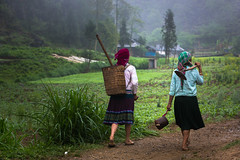 Vietnam: sur les chemins du haut Tonkin. (claude gourlay) Tags: portrait people asia retrato vietnam asie ethnic paysage ritratti ritratto hmong indochine tonkin hagiang ethnie claudegourlay movac hmongblanc