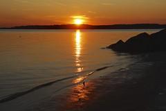 Wellfleet Sunset (Read2me) Tags: cye capecod sun sunsetoceanorange water reflection beach perpetualchallengewinner pregamesweepwinner duele friendlychallenges challengeclubwinner thechallengefactory gamewinner