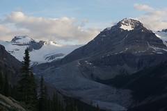 IMGP4938 (2) (donrawson) Tags: lake glacier peyto canadianrockies