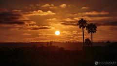 Sunset in Coronado (dougsooley) Tags: california sunset sky orange cloud cali clouds canon sandiego sunsets orangesky coronado cloudscape cloudporn coronadoisland canonlenses canonlens orangeclouds sunsetporn skyporn canon1dx dougsooley
