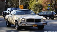 Chevrolet Malibu Classic Landau 1976 (XBXG) Tags: auto old usa holland classic chevrolet netherlands car vintage us automobile sunday nederland voiture malibu american paysbas v8 1976 amerikaans ancienne landau 2015 overveen amricaine chevroletmalibu americansunday dzhg05