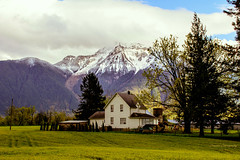 Agassiz, British Columbia (SonjaPetersonPh♡tography) Tags: canada rural britishcolumbia country barns farmland farms countryroads fraservalley harrisonhotsprings 2015 agassiz countrybarns nikond5200 nikonafs18140mmf3556edvr
